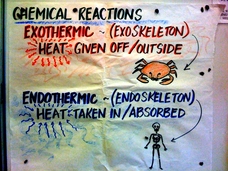 exothermic essay Is hell exothermic or endothermic essay makers, doing a literature review in health and social care 3rd edition, phd thesis self help group.